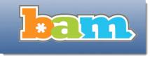 Bam Texting logo